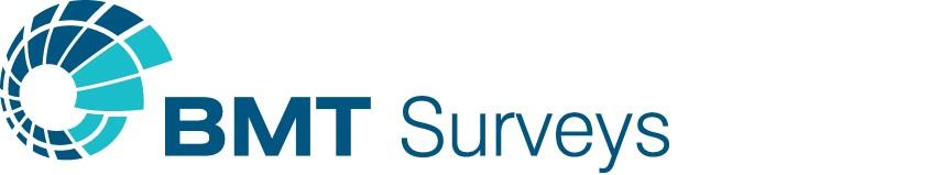 BMT Surveys logo only (RGB positive) jpg (Small)